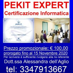 LOCANDINA CORSO ON LINE PEKIT EXPERT_15 novembre