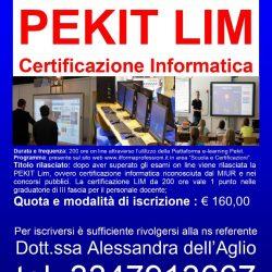PEKIT LIM-3 moduli - 160 €