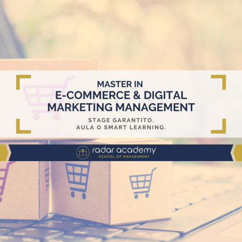 MASTER IN E-COMMERCE - FEED