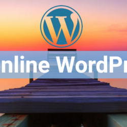 corso seo wordpress